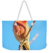 House Finch Tiny Bird Perched On A Tree Weekender Tote Bag