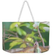 Hummingbird Found In Wild Nature On Sunny Day Weekender Tote Bag