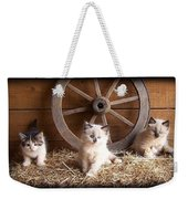 3 Little Kittens With The Wagon Wheel. Weekender Tote Bag