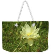 Lotus Flower In Bloom  Weekender Tote Bag