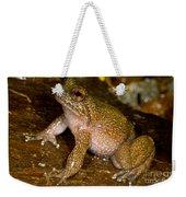 Mehu�n Green Frog Weekender Tote Bag