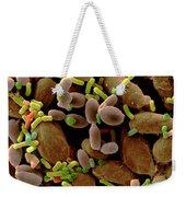 Microorganisms On Cabbage Weekender Tote Bag