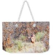 Mule Deer Doe Weekender Tote Bag