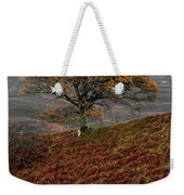 Mute Swan  Weekender Tote Bag by Gavin MacRae