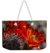 Red Hot Hedgehog  Weekender Tote Bag