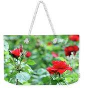 Red Roses Garden Spring Season Weekender Tote Bag