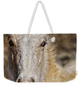 Red Willow Pony Weekender Tote Bag