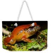 Rosy Ground Frog Weekender Tote Bag