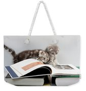 Scottish Fold Cats Weekender Tote Bag