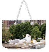 3 Seagulls In A Row Weekender Tote Bag