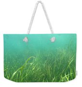 Shallow Freshwater Lake Weekender Tote Bag