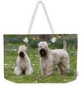 Soft-coated Wheaten Terriers Weekender Tote Bag