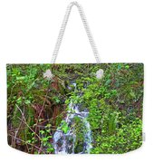 Spring In The Gorge Weekender Tote Bag