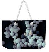 Staphylococcus Saccharolyticus Weekender Tote Bag