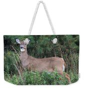 White Tailed Deer Calverton New York Weekender Tote Bag