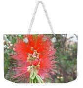 Australia - Red Callistemon Flower Weekender Tote Bag