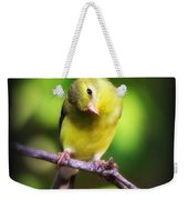 3008 - Goldfinch Weekender Tote Bag