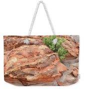 Colorful Sandstone In Valley Of Fire Weekender Tote Bag