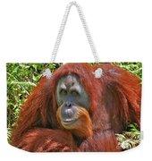 31- Orangutan Weekender Tote Bag
