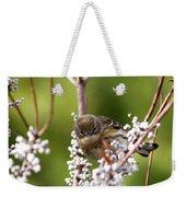 3172 - Warbler Weekender Tote Bag