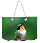 3531 - Ruby-throated Hummingbird Weekender Tote Bag