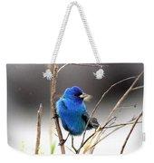 3554-027 -indigo Bunting Weekender Tote Bag