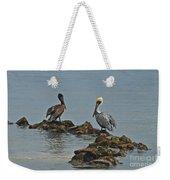 37-  Pelicans Weekender Tote Bag