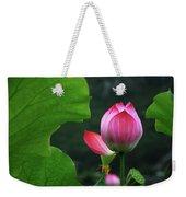 Blossoming Lotus Flower Closeup Weekender Tote Bag