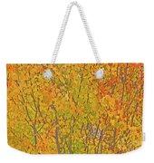 3983 Autumn Pleasure Weekender Tote Bag