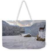 Alpine Winter Reflections Weekender Tote Bag