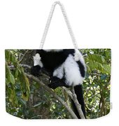 Black And White Ruffed Lemur Weekender Tote Bag
