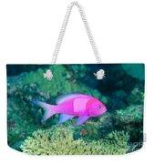Fiji, Reef Scene Weekender Tote Bag