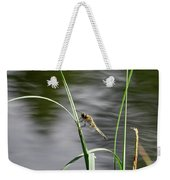Four-spotted Chaser Weekender Tote Bag