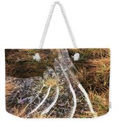 4. Ice Prismatics In Grass 1, Loch Tulla,  Weekender Tote Bag