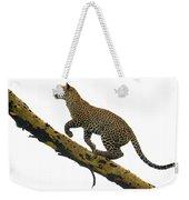 Leopard Panthera Pardus Climbing Weekender Tote Bag