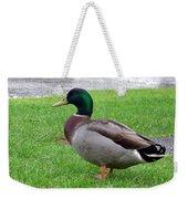 New Zealand - Male Mallard Duck Weekender Tote Bag