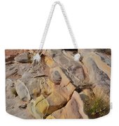 Rainbow Of Color In Valley Of Fire Weekender Tote Bag