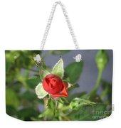 Red Rose Blooming Weekender Tote Bag