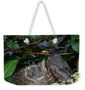 Robin Feeding Its Young Weekender Tote Bag