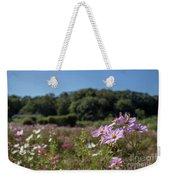 Sensation Cosmos Bipinnatus Fully Bloomed Colorful Cosmos On M Weekender Tote Bag
