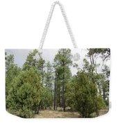 Show Low Landscape Weekender Tote Bag