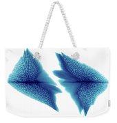 Sturgeon Scales, X-ray Weekender Tote Bag