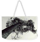 Trees And Sky Weekender Tote Bag