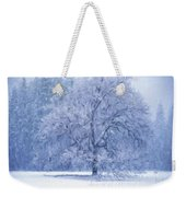 Landscapes To Paint Weekender Tote Bag