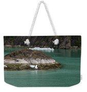 Alaska_00047 Weekender Tote Bag