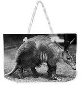 Aardvark Weekender Tote Bag