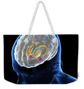 Anatomy Of The Brain Weekender Tote Bag