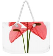 Anthurium Flowers, X-ray Weekender Tote Bag