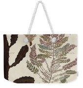 Aquatic Animals - Seafood - Algae - Seaplants - Coral Weekender Tote Bag