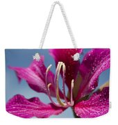 Bauhinia Purpurea - Hawaiian Orchid Tree Weekender Tote Bag by Sharon Mau